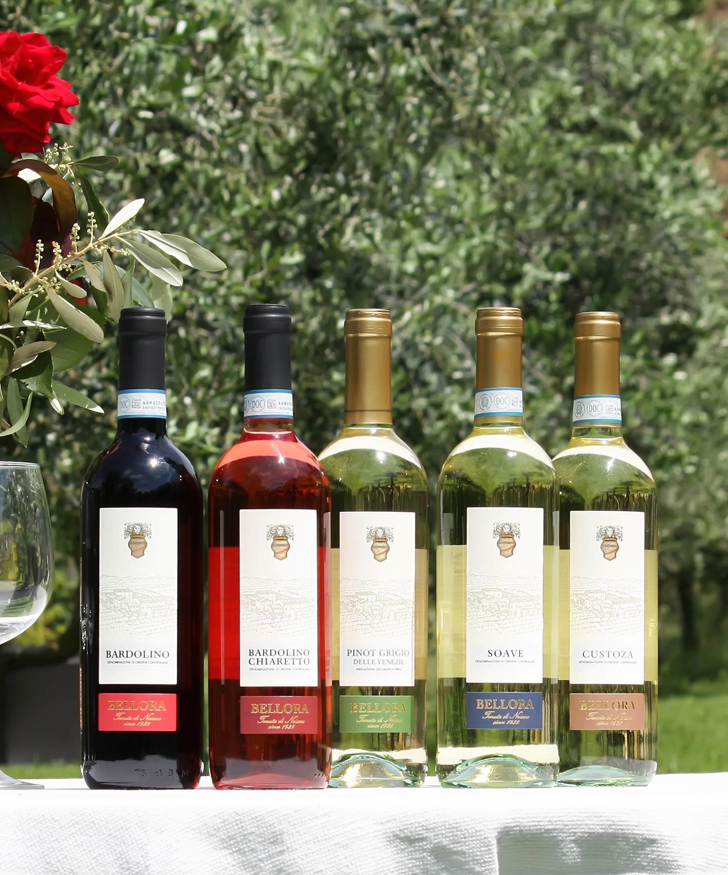 Bellora produzione vini